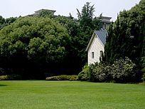 绿树丛中小别墅