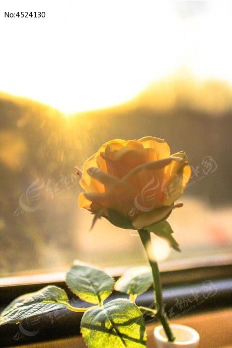 黄玫瑰塑料花图片