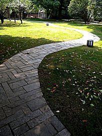花园小径竖构图