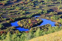 马蹄湖湿地秋色