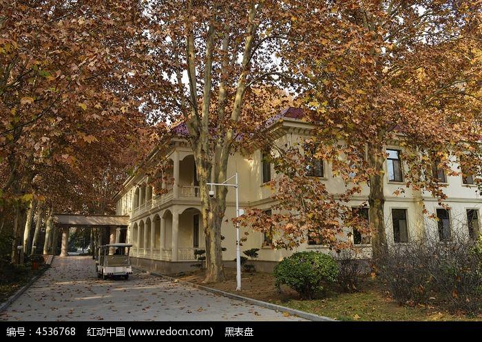 秋季林中别墅