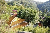 万石植物园景观