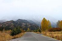 祁连山山林道路