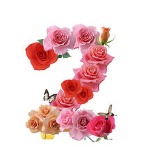 阿拉伯数字花卉