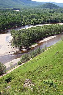 根河源头森林风景