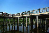蓝天下的湿地栈道景观桥