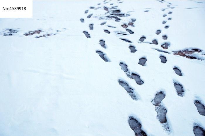 雪地里的脚印图片,高清大图