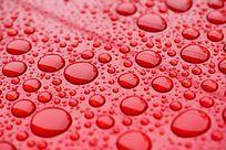红背景上的雨水水珠背景素材