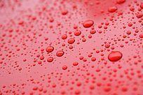 雨水水珠背景素材高清拍摄