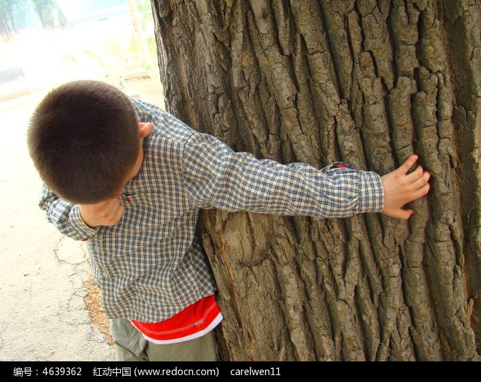 抱着大树害羞的样子