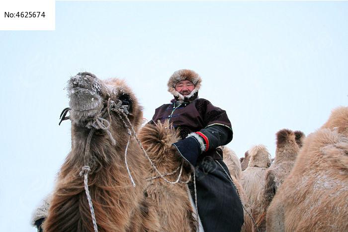 呼伦贝尔草原骑骆驼的蒙古老人高清图片下载 红动网