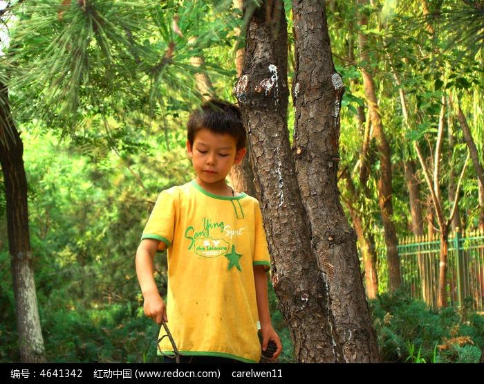 树林里开心的玩的孩子高清图片下载 编号4641342 红动网图片