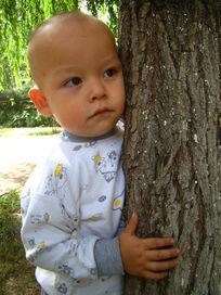 抱着树安静的孩子