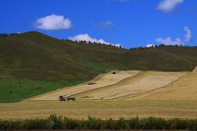 草原田园景观