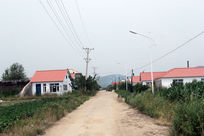 海南乡葡萄园种植基地