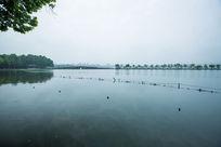 西湖断桥安静湖面