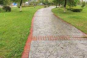 草坪中弯曲的小路