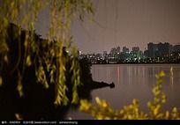 迷人之城市湖泊风光