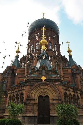 哈尔滨索菲亚教堂鸽子
