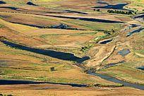 黑龙江畔的湿地
