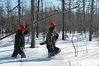 林海雪原伐木人