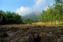 泰山樱桃园山景风光