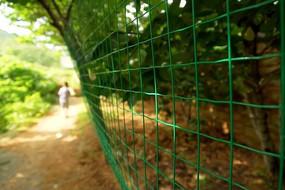 山林小道旁的铁丝网