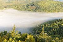 大兴安岭林海雾漫