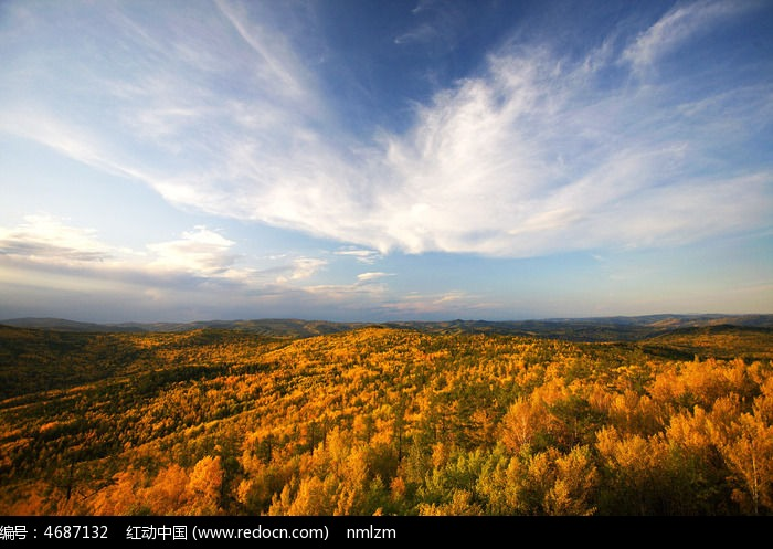 秋云掠过原始森林图片