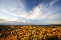秋云掠过原始森林