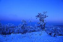 林海雪原雾凇夜景