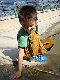 把手放在水里的孩子
