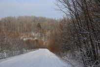 大兴安岭的冬季运材公路