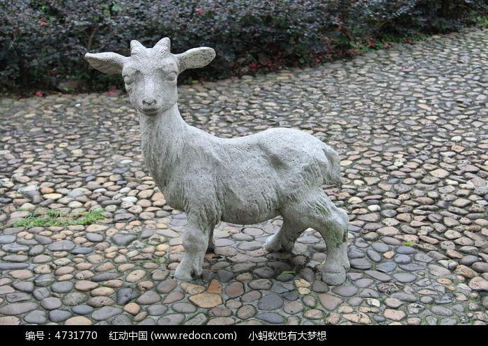 可爱的小羊羔图片