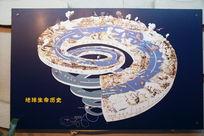地球生命历史进程图