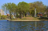 沈阳青年湖畔美景