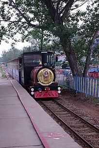 野生动物园的小火车