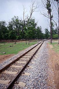 野生动物园内火车轨道