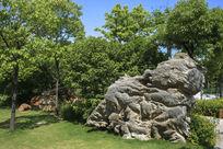 太湖石神态
