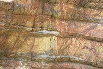 皱纹太湖石