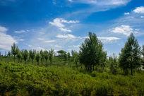 草原园林美景