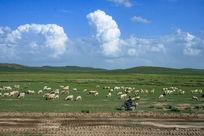 现代牧羊曲
