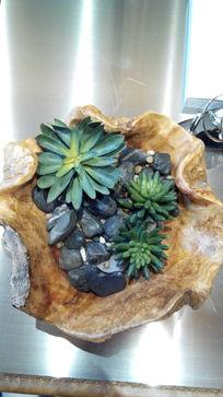 鹅卵石绿植盆栽