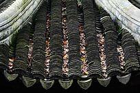 园林景观亭子屋顶