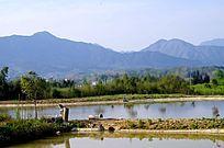 池塘与大山