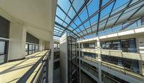 明亮的教学楼天井