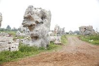 地质公园 景观石 采石场
