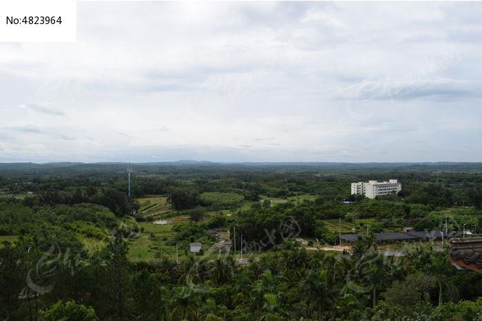 俯瞰树林美景