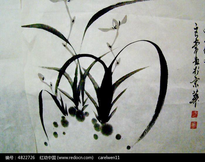 水墨画-植物图片