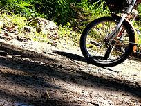 自行车的前胎
